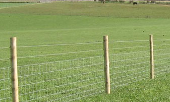 Stock Fencing in Kent